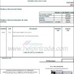 Payment Terms Invoice