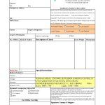 Consular Invoice Pdf